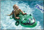 Inflatable Alligator Pool Ride On