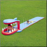 Shark Water Slide